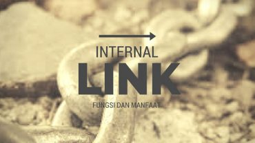 manfaat internal link