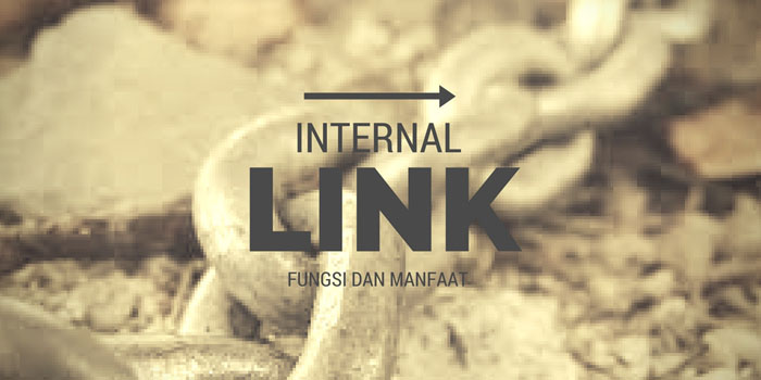 manfaat internal link