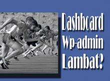 Penyebab Dashboard Wp-admin WordPress Lambat