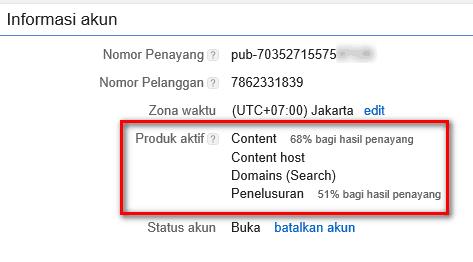 pengaruh custom domain