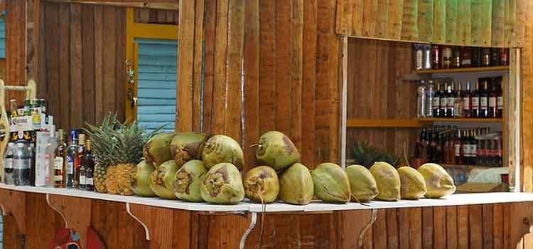 usaha es kelapa muda