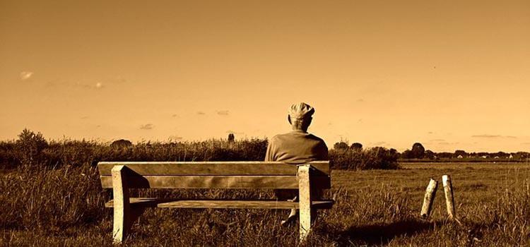 peluang usaha bagi pensiunan