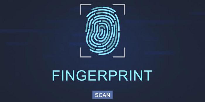 ponsel fingerprint