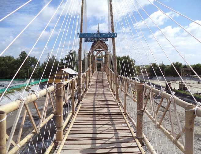 jembatan api-api hutan mangrove kulon progo
