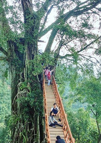11 Objek Wisata Di Bogor Yang Hits Dan Keren Untuk Liburan