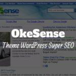 okesense theme wordpress