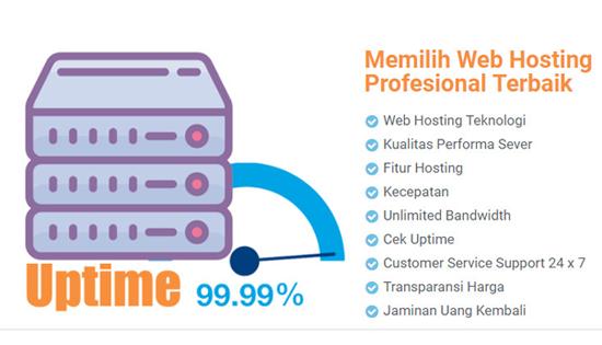 cara memilih hosting terbaik