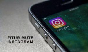 Fitur Mute Instagram