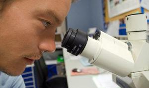 pekerjaan di bidang sains