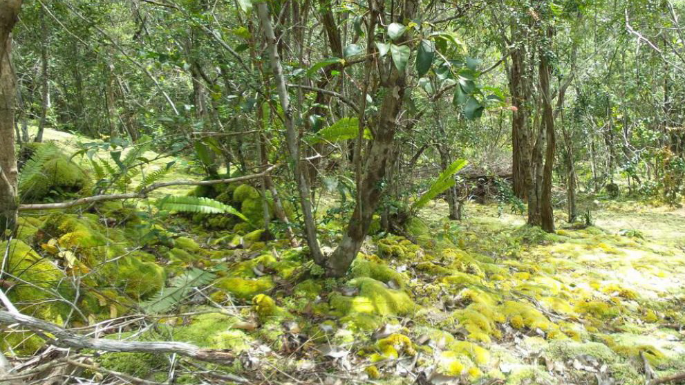Gunong Lumut Geopark Belitong via belitungisland