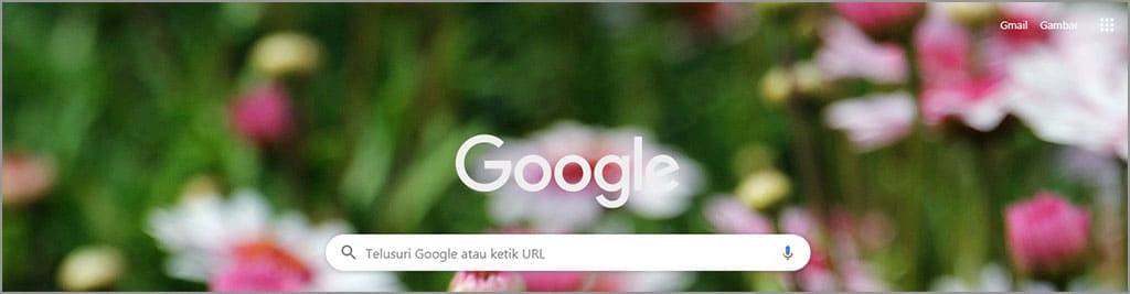 mudahnya mengganti tema google chrome